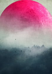 woodland forest hills fog landscape pink moon mood mystery texture surreal dreamy