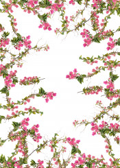 floral botanical plant flower branches pink green pattern