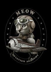 cat pilot ww2