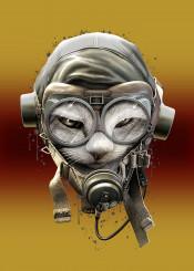 cat pilot wwii