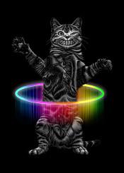 cat dancing funny hulla hullahoop
