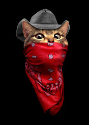 cat cowboy bandana cute decor catlover