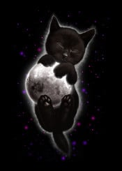 cat kitten moon lunar decor space universe hugging cute