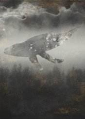 surreal whale misty space stars fantasy texture gold clouds landscape gliding magical mystical animal mammal dreamy