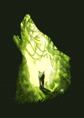 dverissimo designstudio silhouette draing painting green forest woods nature animal scenic animalia wolf wolves glow light sun landscape digital magical wild creature