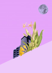 colorful colourful purple lavender flowers moon city cityscape architecture vintage surreal shining