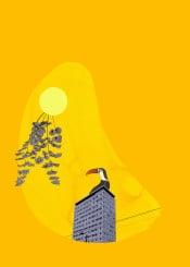 city bird tucan architecture sun leaves yellow heat surreal vintage mixedmedia colorful colourful