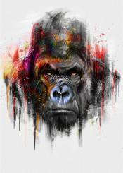 gorilla cool illustration wild home colorful red blue black white
