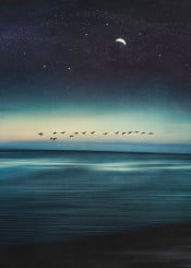 abstraction seascape birds night stars space surreal photography manipulation motion dreamy glow horizon
