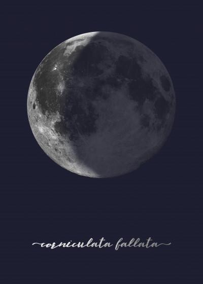 Cascadia Design Studio The Moon on Navy in Latin   Displate Prints on Steel