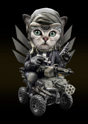 cat kitten decor fighter army gun