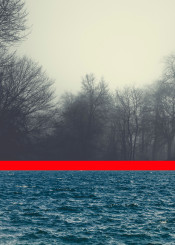 collage seascaoe blue red line forest fog trees bnw waves birds