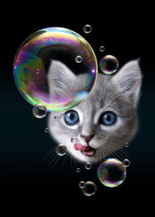 cat kitten bubbles cute