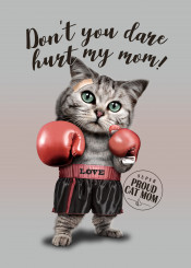 cat kitten boxer mom mummy funny