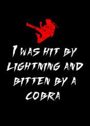 kung fury kungfury kungfury2 karate fu martial arts barbarianna triceracop hackerman cobra funny hilarious bitten kick punch