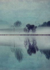 manipulation mood teal reflection mist nature outdoor trees landscape water serene zextures