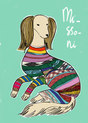 missoni fashion dog saluki hound