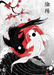 koi koifish red japan yinyang redsun