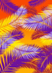 tropical palm leaves colorful gifts home family homedecor summer life love shopping design pop popart minimal sunset giftsforher kids colors