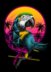 parrot parrots animal animals birds bird rad neo noir