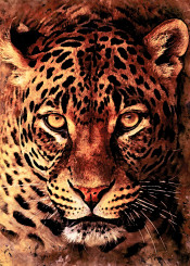 gepard leopard cat cats kitty animal animals wild watercolor digital decor decoration illustration jbjart