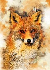fox ginger animal animals wild digital foxy decor decoration illustration