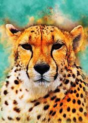 gepard cat cats kitty animal animals wild decor decoration illustration