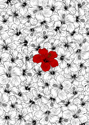 hibiscus flower red floral pattern ink minimal nature illustration