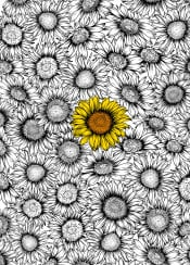 sunflower flower floral bloom blossom ink vector minimal pattern