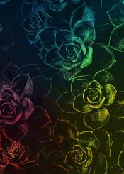 flower flowers flora floral garden pattern color decor decoration illustration