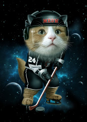 cat kitten space hockey ice universe sports