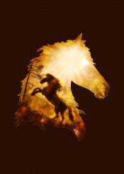 dverissimo designstudio horse animal animalia illustration mystic dark fire sun bright light autumn silhouette drawing wild nature spirit brave mixed media painting equine horses