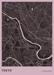 map maps citymap citymaps tokyo japan japanese aerial minimalistic minimal office view
