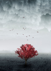 tree digital surreal birds winter dreamy 3d effects composite photography red misty moody fantasy illustration field
