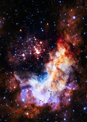 westerlund space esa nasa hubble stars universe