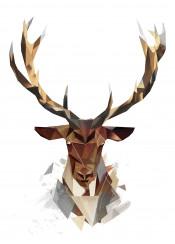 deer antlers brown animals head lowpoly geometric