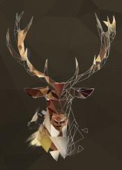 sketch deer antlers head animals lowpoly geometric