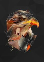 eagle bird head animal sketch lowpoly geometric abstract line