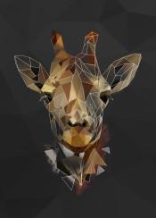 giraffe sketch head animal brown abstract lowpoly geometric line