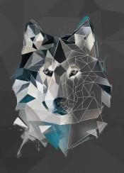 wolf sketch dog head animal abstract geometric line lowpoly