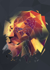lion cat sketch animals head animal geometric line abstract lowpoly