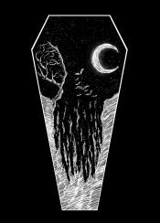 eerie nature night nightmare bat anaimals animallovers tree moon moonlight space artwork design digital designart digitalart graphic graphicdesign illusion illustration dark darkness horror mystic mystical mysterious sebrodbrick