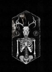 deer deerman humandeer deerskull humandeerskull skeleton darkart horror surreal illustration monster mooz thunder space fineart fineliner ink
