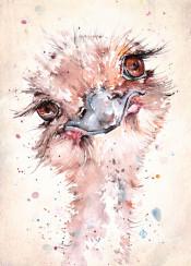 emu ostrich bird birds africa cheeky fun curious sillierthansally portrait cute watercolor watercolour painting