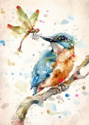 kingfisher bird birds dragonfly insect blue orange green branch relationships dynamic painting watercolor watercolour friends sillierthansally bright fun