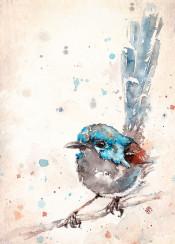 bird birds cute fluffy fairy wren sparrow blue feather branch sillierthansally painting watercolour watercolor little sweet farm