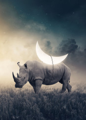 rhino moon stars surreal dreamy cloudy fantasy photomanipulation
