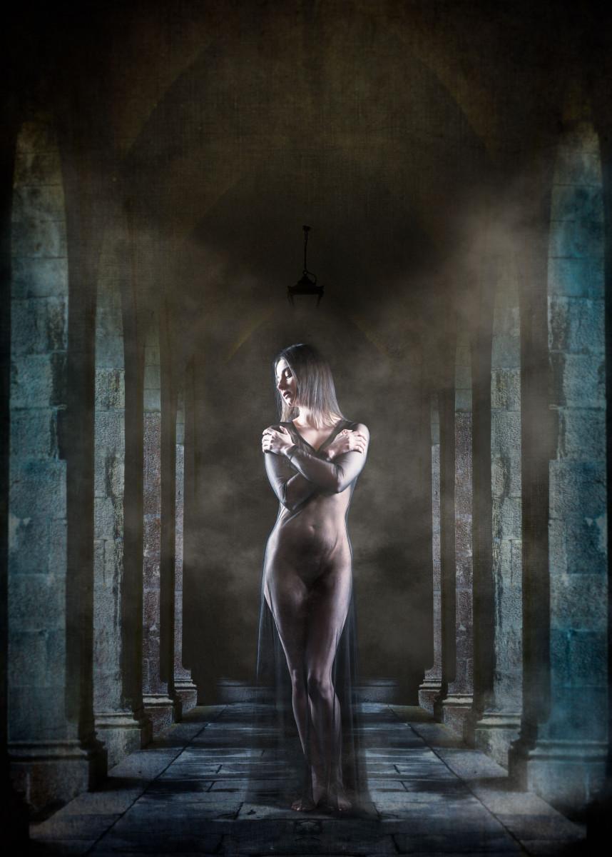 Art nude portrait of a woman in a sheer dress 555704
