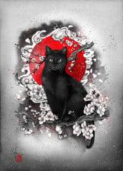 black cat red sun