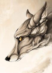 fox redfox red wolf animal animals wild